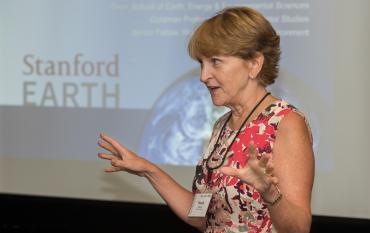 Pam Matson presenting
