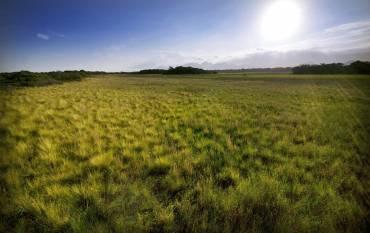 sun shines on U.S. grasslands