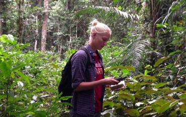Elsa Ordway in Cameroon's rainforest