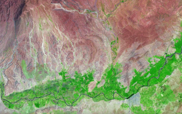 Satellite image of plant growth