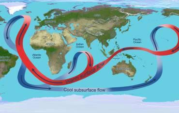 Map of circulation flows