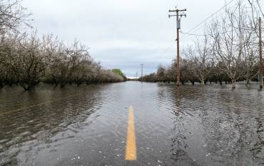 flood street