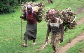 Local girls bringing back firewood near Jinka, Southern Ethiopia.