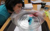 High school teacher Monica Sircar watches a model convection system in a bowl of water
