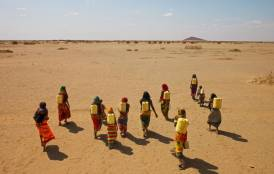 African women carry heavy jerry cans filled with water.