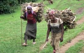 Local girls bringing back firewood near Jinka, Southern Ethiopia.