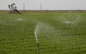 irrigation and oil production in Kern County