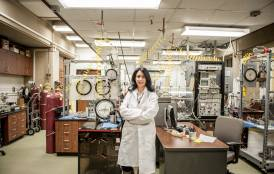 Assistant Professor Tiziana Vanorio in her lab