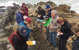 Dean Steve Graham with students on the coast