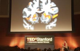 Nik Sawe spoke at TEDxStanford 2015