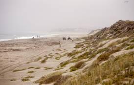 Beach in Monterey Bay