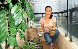Stanford alumna Serafina Auster Singapuri displays potted plants from her urban garden.