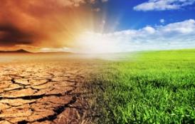 Climate change activism