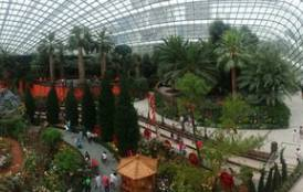 interior of the Flower Dome at Singapore's Gardens by the Bay