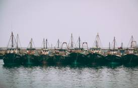 boats docked at Chinese fishing port