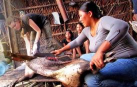 Women carving dead animal