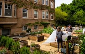 Roble Hall organic garden
