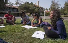 Students learning in a group outside