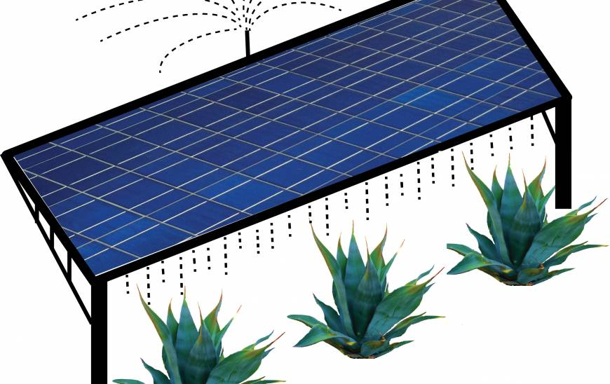 Solar farm illustration.